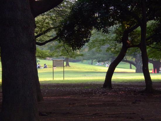 公園20150711.jpg